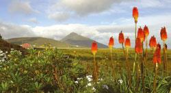 4 Day Isle of Skye Tour